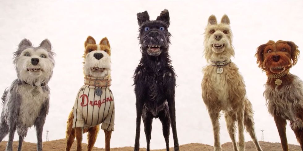 Did You Hear The Rumour The Immersive World Of Isle Of Dogs Culturised